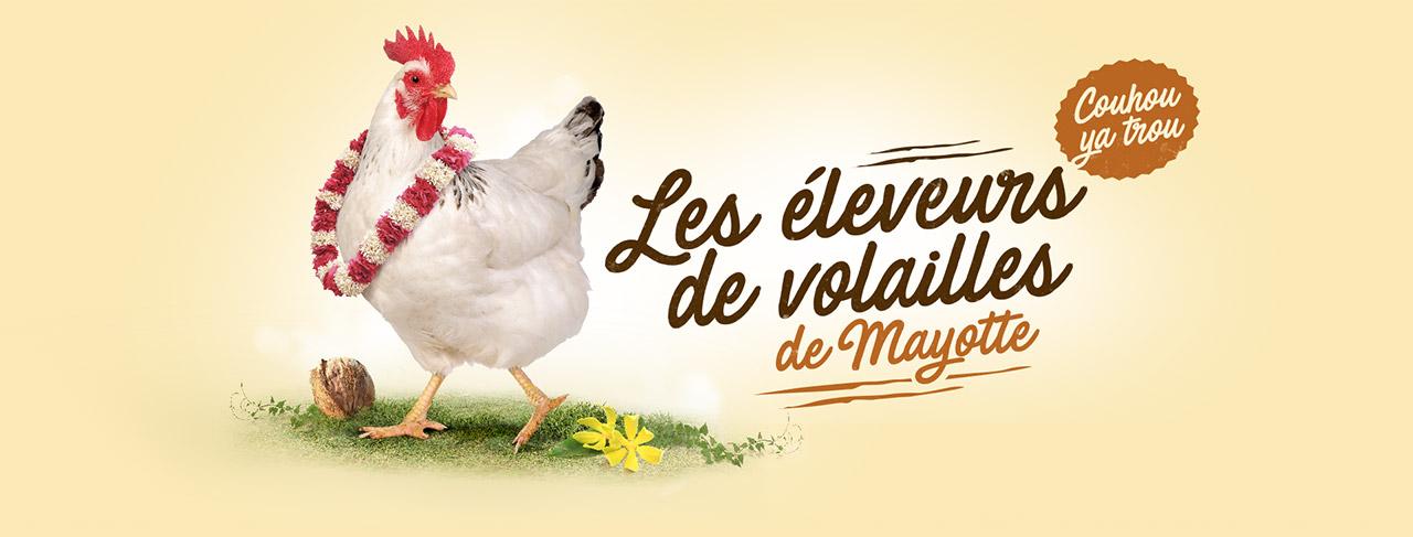 Les éleveurs de volailles de Mayotte